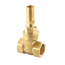 Gate and Globe Valves Gate Valve Brass Lockshield, PN20 1122
