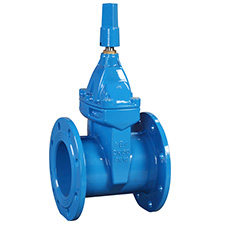 Industrial Gate Valves Resilient Seated Gate Valve,  PN16, BS5163 RVCX