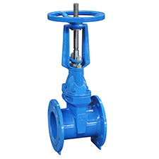 Industrial Gate Valves Resilient Seated Gate Valve, PN16, EN1171 RVRX