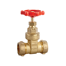 Gate and Globe Valves Gate Valve Brass PN 20 Light Pattern 1001